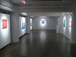 Bevan Shaw  What Are You Driving At? Installation View