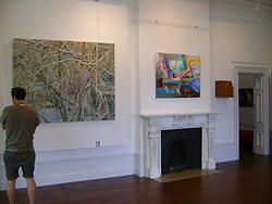 Bevan Shaw  21st Annual Wallace Art Awards 2012 Installation View